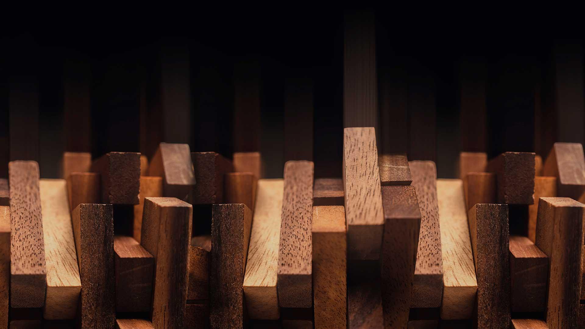 Colle e adesivi professionali per il legno